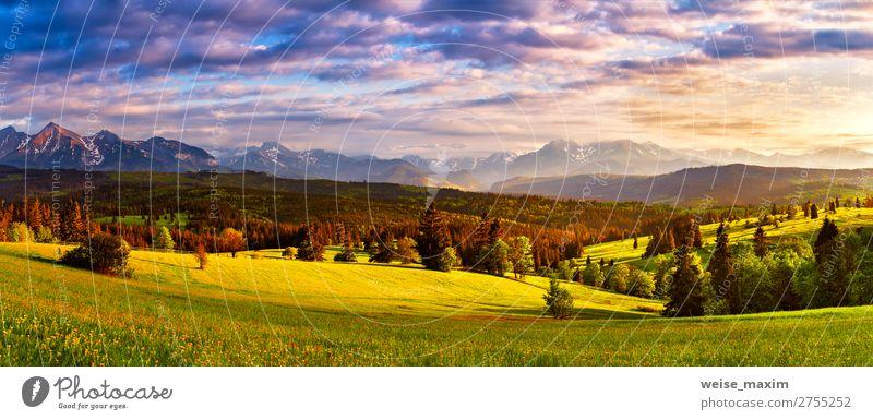 Panorama der Tatra-Berge. Schönes Tal und bewölkter Himmel schön Ferien & Urlaub & Reisen Tourismus Sommer Berge u. Gebirge Natur Landschaft Wolken