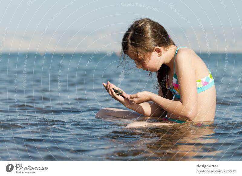 Paradies gefunden Freizeit & Hobby Schwimmen & Baden Ferien & Urlaub & Reisen Tourismus Ferne Sommer Sommerurlaub Sonne Meer Wellen Mensch Mädchen 1 8-13 Jahre