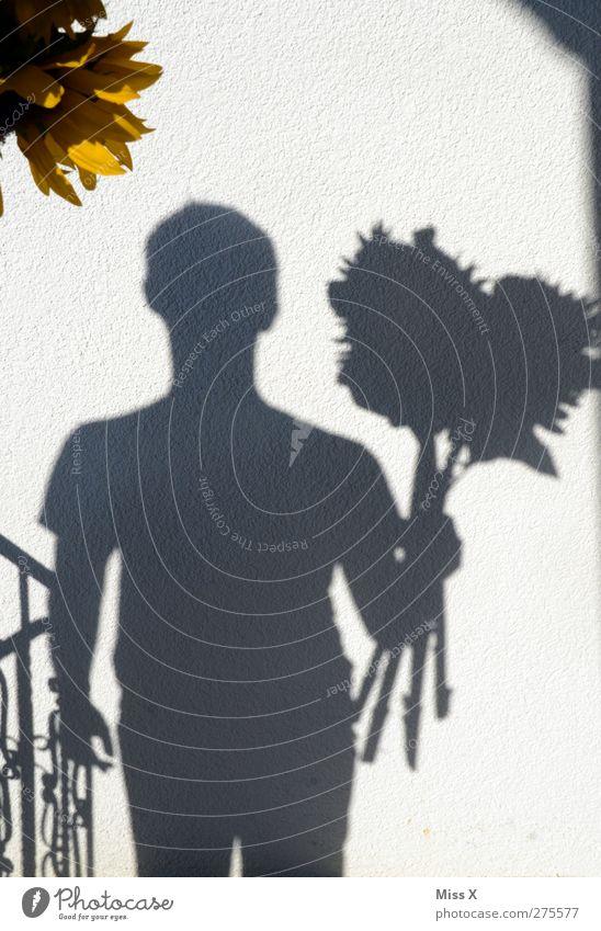 Happy B* Valentinstag Muttertag Geburtstag Mensch maskulin 1 13-18 Jahre Kind Jugendliche Blume Blüte Gefühle Liebe Verliebtheit Romantik Schattenspiel