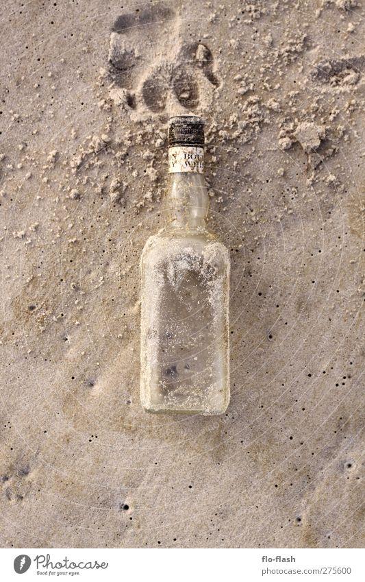golden whiskey & big dogs Lebensmittel Getränk Alkohol Spirituosen Whiskey Bourbon Flasche Sand Küste Strand Bucht Nordsee Insel Glas authentisch Farbfoto