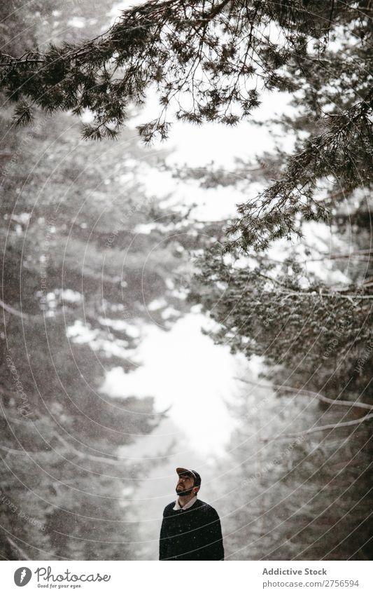 Touristen stehen im verschneiten Wald Mann Straße Winter Natur Schnee kalt Frost Jahreszeiten Landschaft weiß schön ländlich gefroren Beautyfotografie Wetter