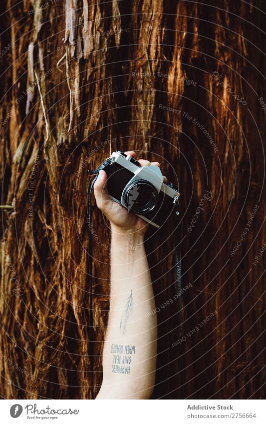 Hand mit Kamera im Wald Tourist Fotokamera Natur Ferien & Urlaub & Reisen Abenteuer Berge u. Gebirge Lifestyle