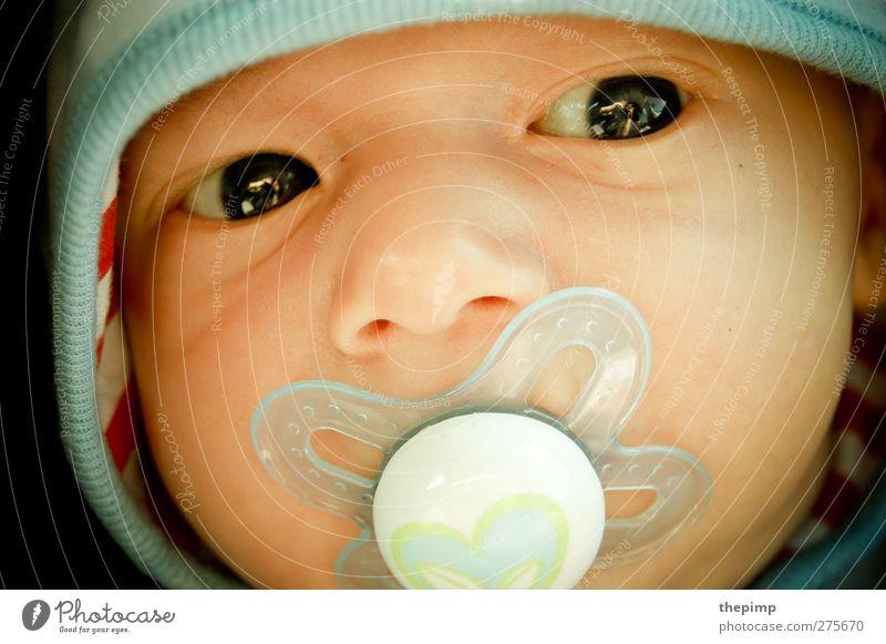 jona maskulin Baby Kopf 1 Mensch 0-12 Monate Kapuze klein Vertrauen Geborgenheit Warmherzigkeit Farbfoto Nahaufnahme Zentralperspektive Porträt Wegsehen