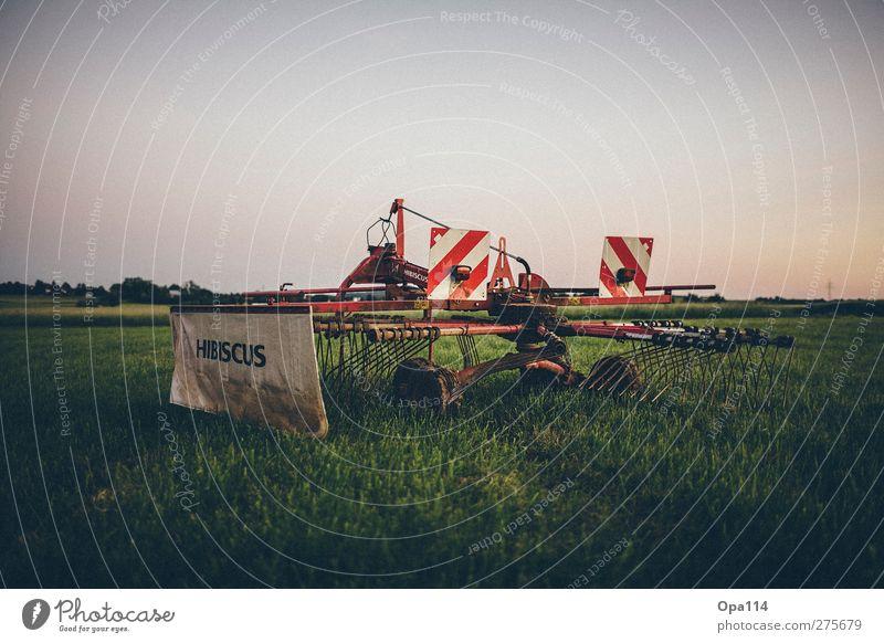 """Schwader Umwelt Natur Landschaft Pflanze Tier Sommer Schönes Wetter Nutzpflanze Wiese Feld warten blau mehrfarbig grün rot """"Arbeit Landwirtschaft Ernte Heu Gras"""