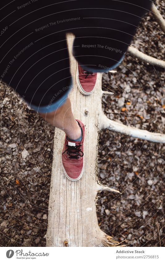 Mann Tourist, der auf dem Kofferraum spazieren geht. Wald Rüssel Gleichgewicht Beine wandern Ferien & Urlaub & Reisen Natur Abenteuer Ausflug Mensch Lifestyle