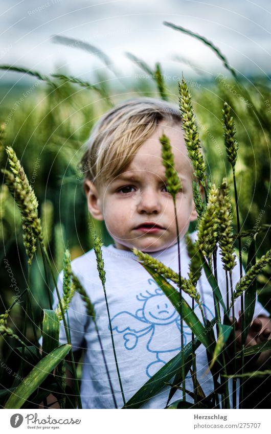 Yannik Mensch Kind grün Einsamkeit Ferne Auge Junge Kopf Feld Kraft Kindheit warten maskulin authentisch Kommunizieren einzigartig