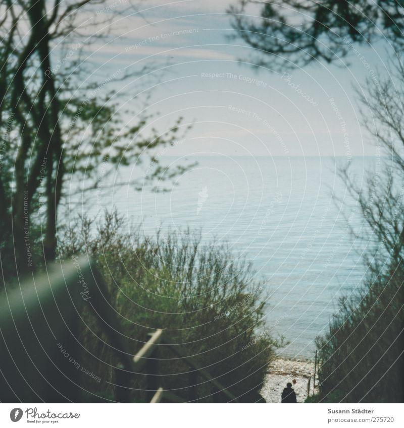 Hiddensee | geboren um zu reisen. 1 Mensch Wasser Wolken Frühling Baum Sträucher Wellen Küste Strand Ostsee Meer genießen Unendlichkeit Treppengeländer