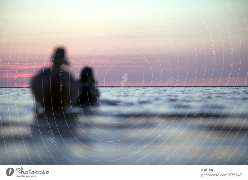Weltreise Himmel Wasser Ferien & Urlaub & Reisen Tier Freiheit Küste Freundschaft Horizont Schwimmen & Baden Zusammensein Wildtier Tierpaar nass Beginn