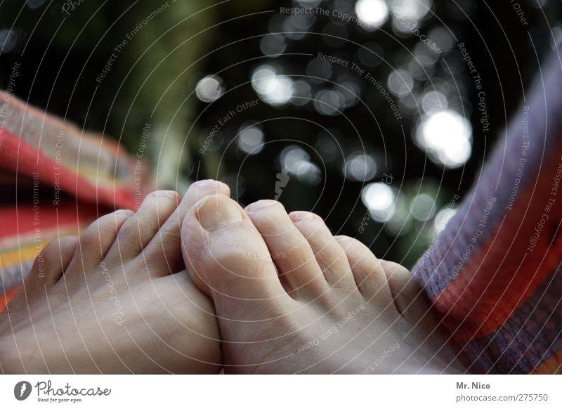 rumlümmeln Garten maskulin Haut Fuß 1 Mensch Umwelt Sommer Zufriedenheit ruhig Hängematte Zehen Erholung chillen Zehennagel Pause Barfuß Wochenende faulenzen