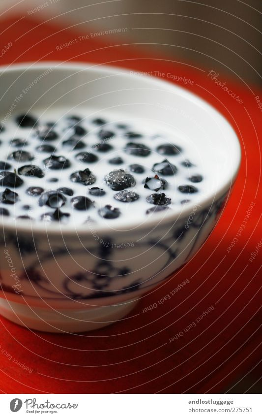 blaubeeren mit milch und zucker. blau Farbe weiß rot natürlich Gesundheit Ernährung ästhetisch genießen süß lecker Bioprodukte Flüssigkeit Vorfreude Schalen & Schüsseln Vegetarische Ernährung