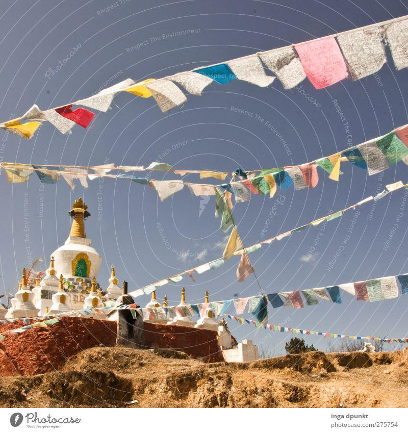 mit dem Wind China Yunnan Tempel Abenteuer Erholung Religion & Glaube Tourismus träumen Zufriedenheit Buddhismus Tibet Fahne Gebetsfahnen Farbfoto Außenaufnahme