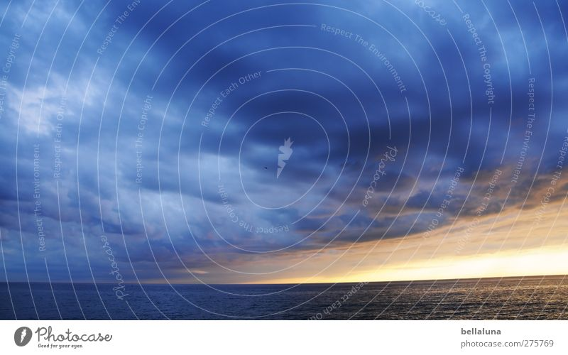 Hiddensee | Wolkendrama Umwelt Natur Landschaft Wasser Himmel Gewitterwolken Horizont Sonne Sonnenaufgang Sonnenuntergang Sonnenlicht Frühling Sommer Herbst
