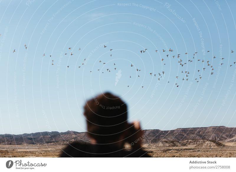 Mann fotografiert fliegende Vögel Wüste Vogel Ferien & Urlaub & Reisen Lifestyle Mensch Erwachsene