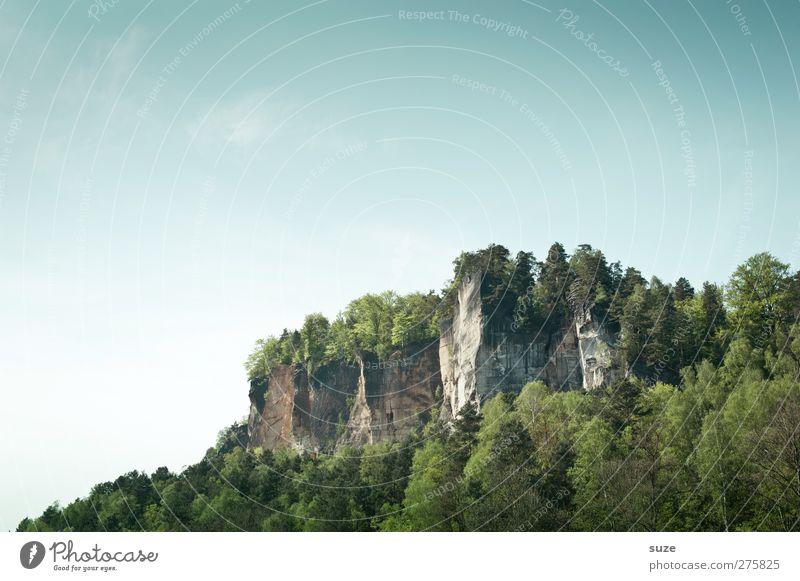 Schönes Sachsen Himmel Natur Ferien & Urlaub & Reisen grün Baum Pflanze Wald Landschaft Umwelt Berge u. Gebirge Frühling Freiheit Felsen Klima Tourismus