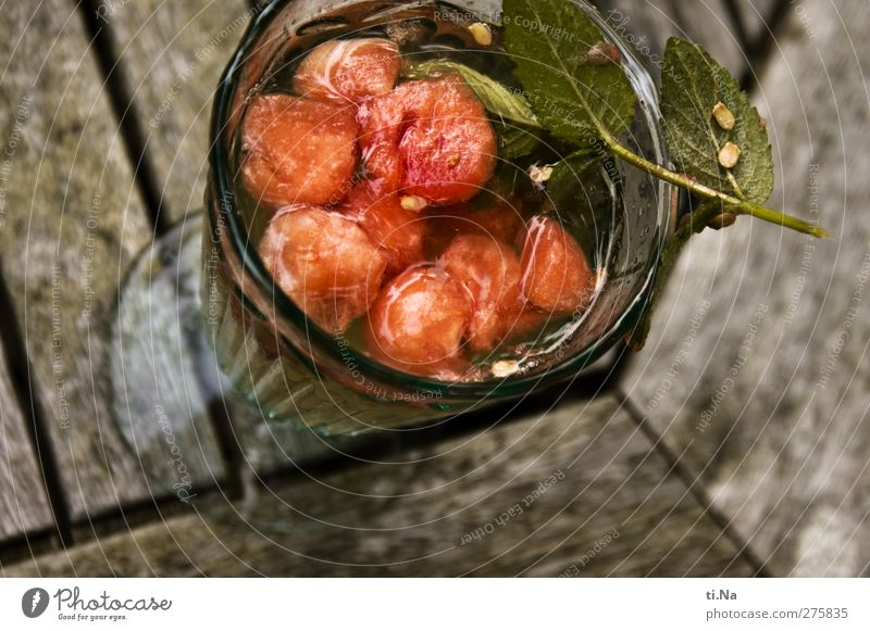 Cocktail mit ganzen Melonen.... Frucht Kräuter & Gewürze Picknick Wassermelone Minze Minzeblatt Getränk Erfrischungsgetränk Alkohol Wein Sekt Prosecco