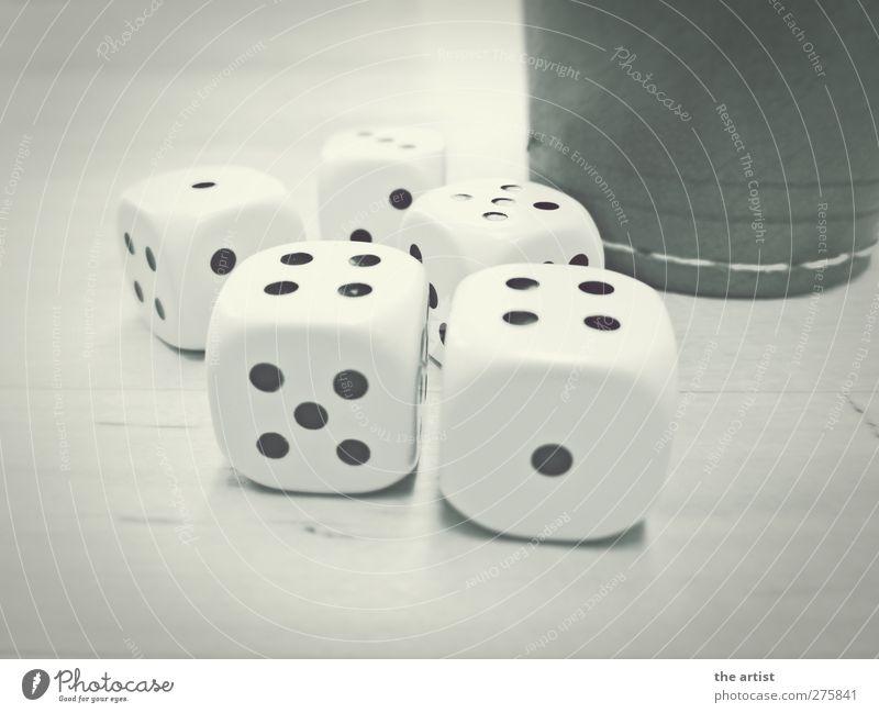 Glücksspiel kann süchtig machen ruhig Spielen Glück Erfolg Würfel Hoffnung Ziffern & Zahlen Kunststoff eckig Leder Erwartung Sucht geduldig Misserfolg Missgeschick Glücksspiel