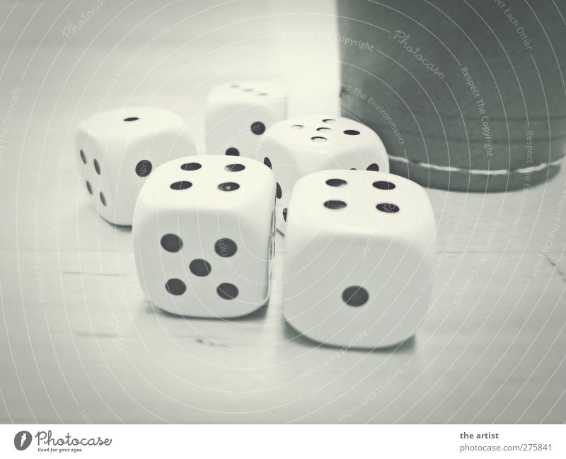 Glücksspiel kann süchtig machen Spielen Würfel Kunststoff eckig geduldig ruhig Hoffnung Erfolg Erwartung Misserfolg Missgeschick Leder Ziffern & Zahlen Sucht
