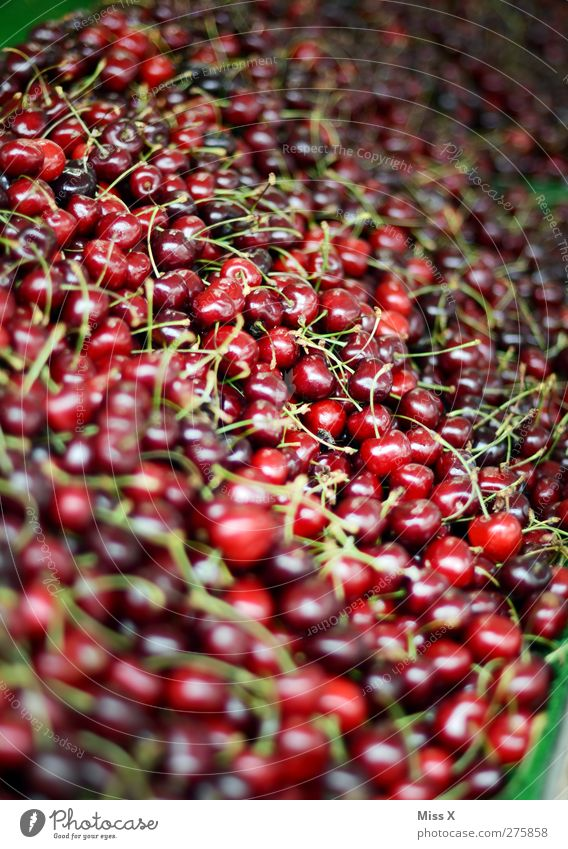 10 000 Kirschen Lebensmittel Frucht Ernährung Bioprodukte Vegetarische Ernährung frisch Gesundheit klein lecker süß rot Wochenmarkt Ernte verkaufen