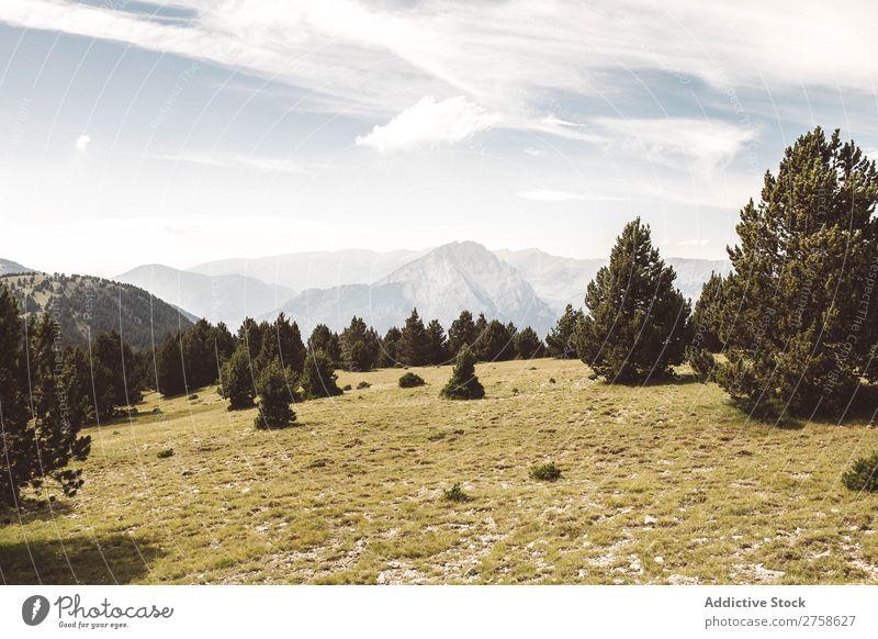 Grüner Wald und Hügel Berge u. Gebirge Natur Landschaft Felsen Ferien & Urlaub & Reisen Sonnenstrahlen Tag schön Aussicht Sommer Tourismus Umwelt natürlich