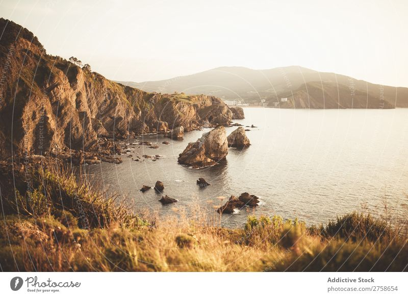 Große Küstenfelsen am Meer Hügel Berge u. Gebirge Natur Landschaft Felsen Stein