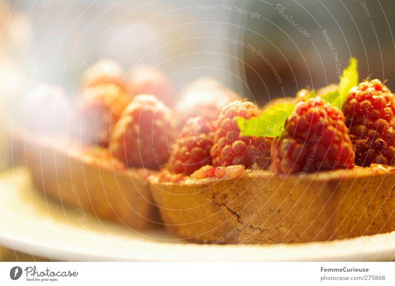 Lecker Fruchttörtchen. :) Sommer Frucht Ernährung Lebensmittel genießen Übergewicht Café Süßwaren lecker Kuchen Teller Bioprodukte Leichtigkeit Festessen Picknick Backwaren