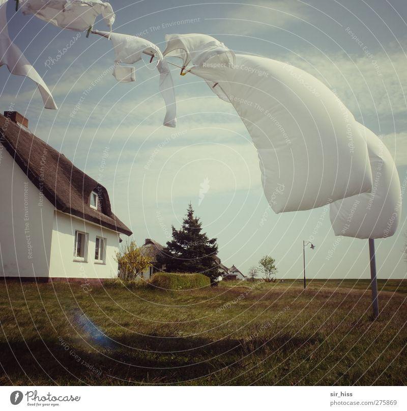 Hiddensee   Landidylle Häusliches Leben Haus Wäsche Wäscheleine Gras Himmel Wolken Garten Feld Einfamilienhaus Landhaus Straßenbeleuchtung Bettlaken