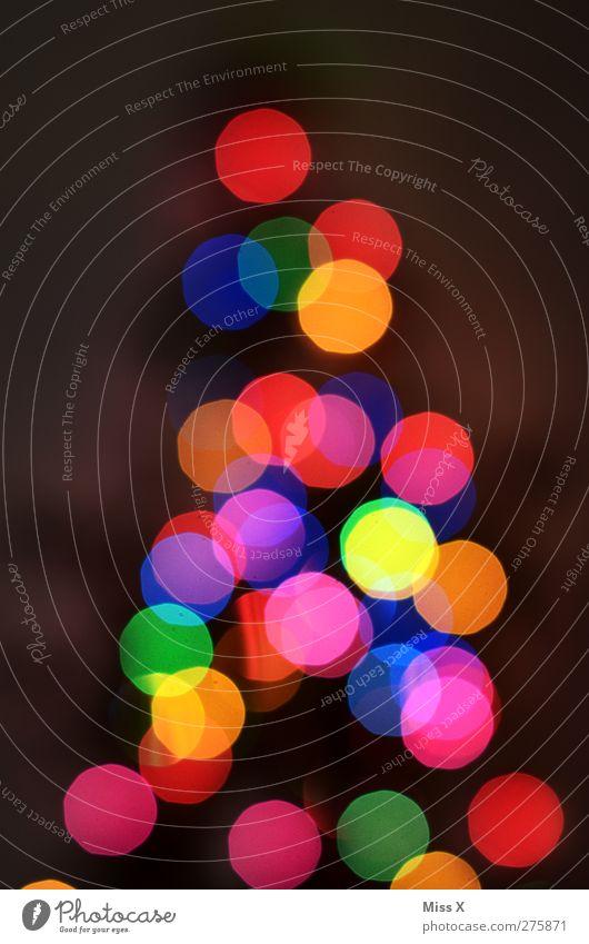 out of season Weihnachten & Advent leuchten Weihnachtsbaum Weihnachtsdekoration Lichterkette Weihnachtsbeleuchtung Lichtermeer