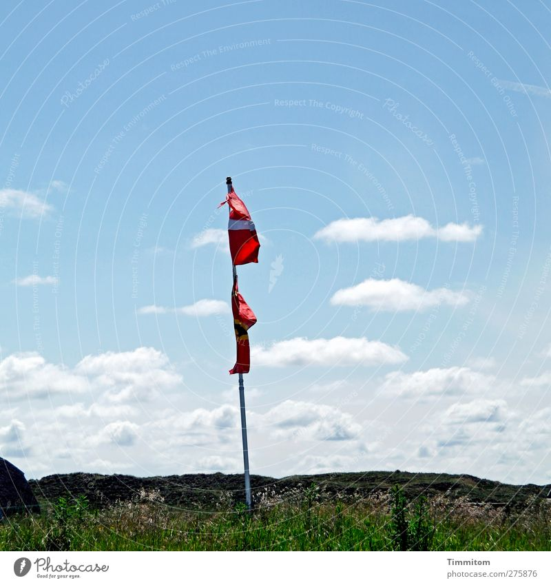 mødested Himmel Natur Ferien & Urlaub & Reisen Pflanze blau grün Sommer weiß rot Wolken Freude Umwelt Gras Schönes Wetter Hügel Fahne