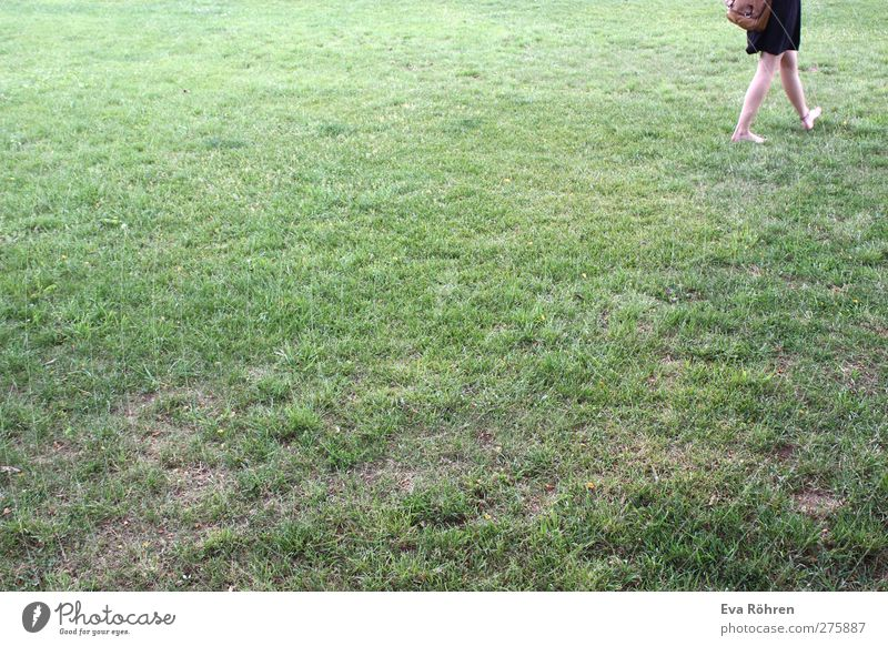 Barfuß durch den Sommer feminin Junge Frau Jugendliche Erwachsene Beine Natur Gras Wiese Bewegung gehen laufen einfach frei nackt natürlich grün Lebensfreude