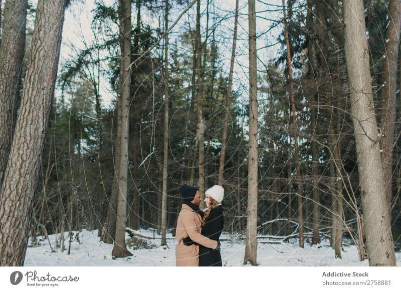 Paar posiert im Winterwald multiethnisch Stil warme Kleidung lässig Natur Wald Schnee Huckepack schön Person gemischter Abstammung schwarz Jugendliche