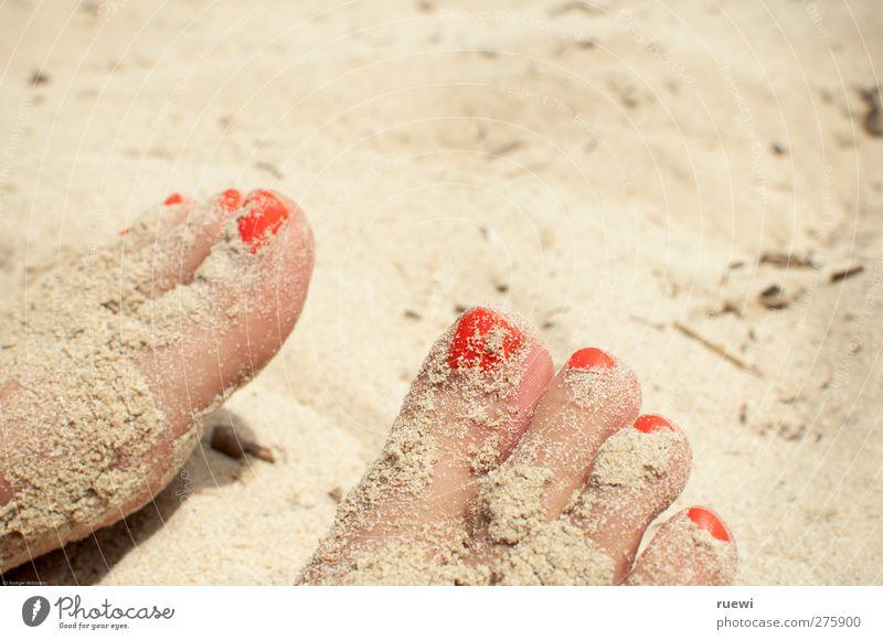 Sand im Ge(h)triebe Haut Nagellack Ferien & Urlaub & Reisen Sommer Sommerurlaub Sonnenbad Strand Mensch feminin Frau Erwachsene Fuß Zehen Zehennagel 1
