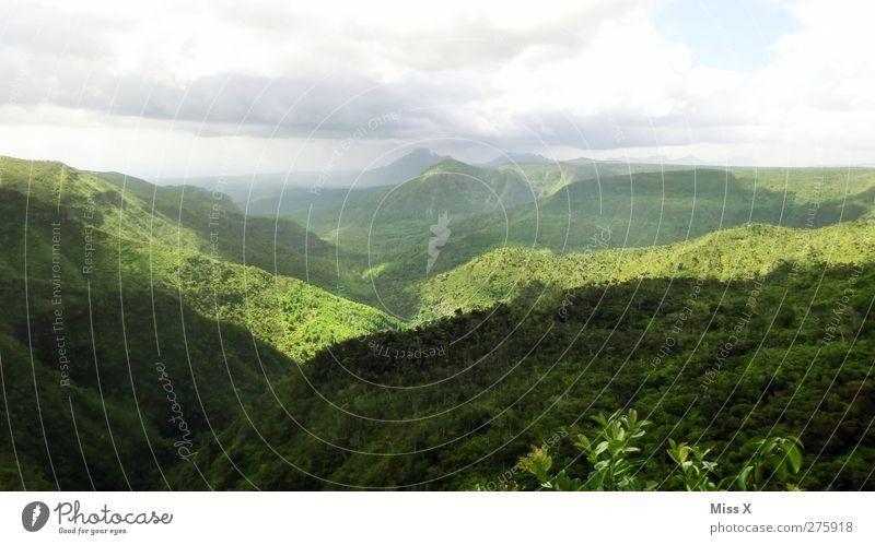 Regenwald Abenteuer Ferne Expedition Natur Landschaft Wolken Baum Urwald Hügel Berge u. Gebirge exotisch grün Tourismus Farbfoto Außenaufnahme Menschenleer