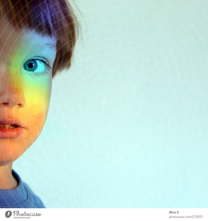bis hier und nicht weiter Mensch Kind Kleinkind 1 1-3 Jahre 3-8 Jahre Kindheit Blick mehrfarbig Regenbogen regenbogenfarben entdecken Neugier Farbfoto