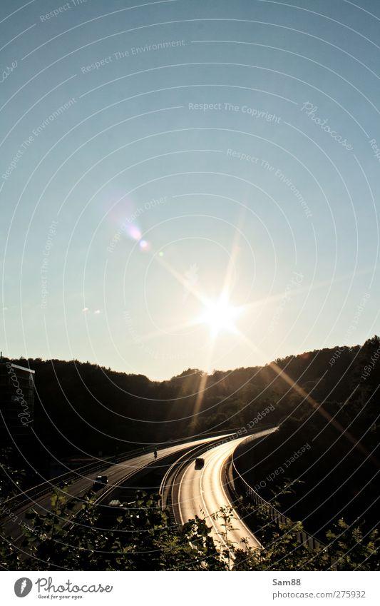 Fahrt in die Sonne Natur Sommer Baum Sonne Wald Landschaft Straße Freiheit PKW träumen hell Brücke Güterverkehr & Logistik heiß Bauwerk Autobahn