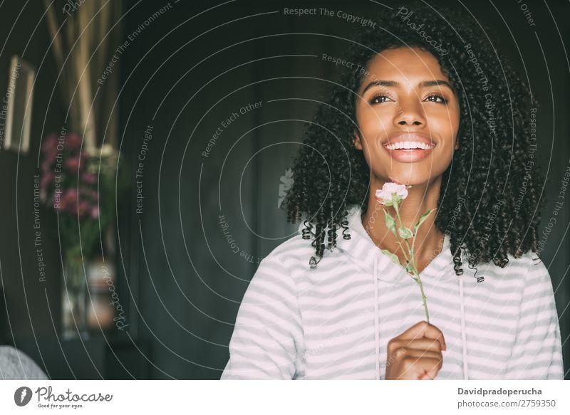 Nahaufnahme einer hübschen schwarzen Frau mit lockigem Haar, die mit einer Rosenblume lächelt, sitzt auf dem Bett und schaut weg. schwarze Frau Porträt lügen