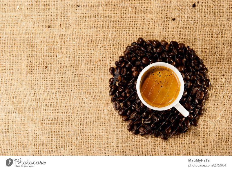 Erholung Lebensmittel Gefühle Stil träumen elegant Design Lifestyle Getränk Macht Kaffee Romantik trinken Getreide Überraschung Schokolade