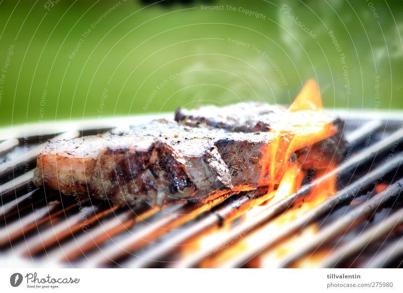 Gut gegrillt Fleisch Ernährung Fotografie Grillen Sommer grün Brand Rostfreier Stahl Feuer Flamme Wärme Rauch Steak Rindfleisch rot gelb lecker Sonne Fett