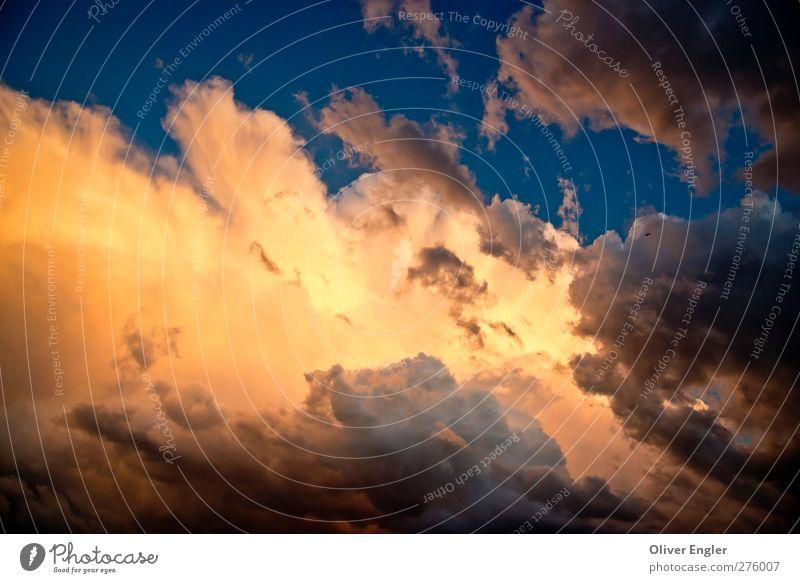 Himmlisch Umwelt Natur Luft Wasser Himmel Wolken Gewitterwolken Sonnenaufgang Sonnenuntergang Sonnenlicht Sommer Klima Klimawandel Wetter Unwetter Sturm