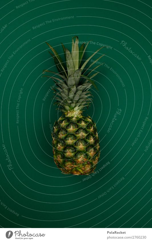 #A# Exotisches Grün Kunst Kunstwerk ästhetisch Ananas Ananasblätter Ananasplantage exotisch Südfrüchte Frucht fruchtig fruchtbar Gesunde Ernährung