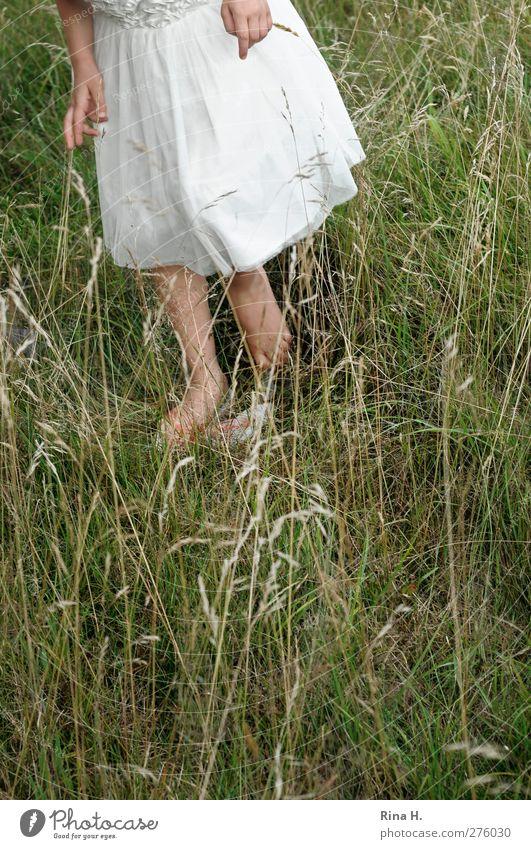 wo ist denn der Grashüpfer ? Mädchen 1 Mensch 3-8 Jahre Kind Kindheit Natur Sommer Wiese Kleid Flipflops natürlich grün Farbfoto Außenaufnahme