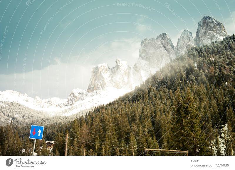Up and Down Himmel Natur Baum Pflanze Wald Landschaft Umwelt Berge u. Gebirge Frühling Luft Klima Schilder & Markierungen authentisch Urelemente Schönes Wetter Alpen