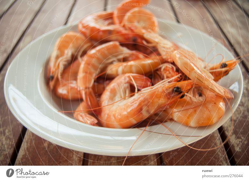 13,99 das Kilo Lebensmittel Meeresfrüchte Langustini Ernährung Delikatesse Teller Tier Totes Tier Languste einfach frisch Gesundheit orange rot weiß