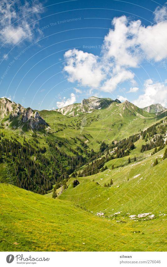 grüner Berg Natur Landschaft Wolken Sommer Hügel Felsen Alpen Gipfel gigantisch blau Abenteuer Einsamkeit Perspektive Berg und Tal Schweiz Niedersimmental Bern