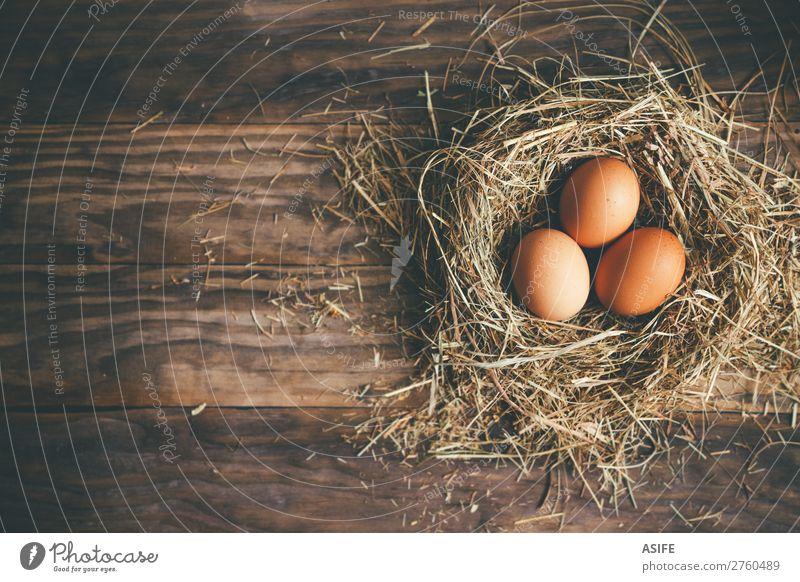 Frische Hühnereier im Nest auf rustikalem Hintergrund Ernährung Feste & Feiern Ostern Menschengruppe Gras Holz frisch oben braun Ei Pute Hähnchen Stroh Heu
