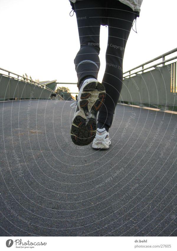 joggingschuh Sport Bewegung Hund Schuhe laufen rennen Brücke Freizeit & Hobby Joggen Leichtathletik