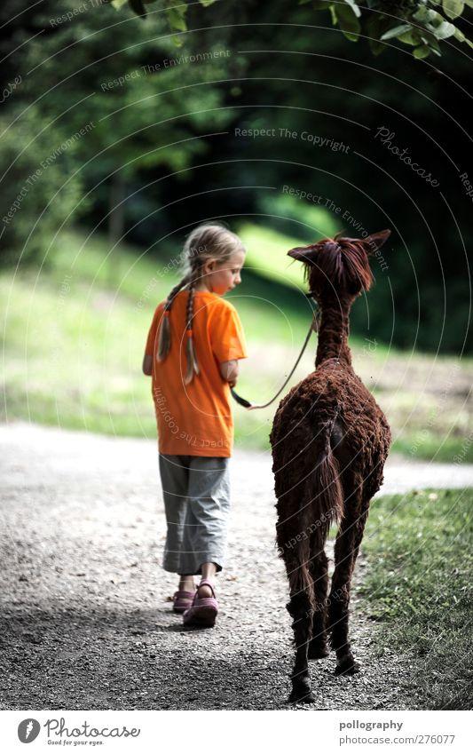 zusammen in die ferne Mensch Kind Natur Sommer Pflanze Mädchen Tier Landschaft Ferne Wiese feminin Leben Frühling Freiheit Zusammensein Kindheit