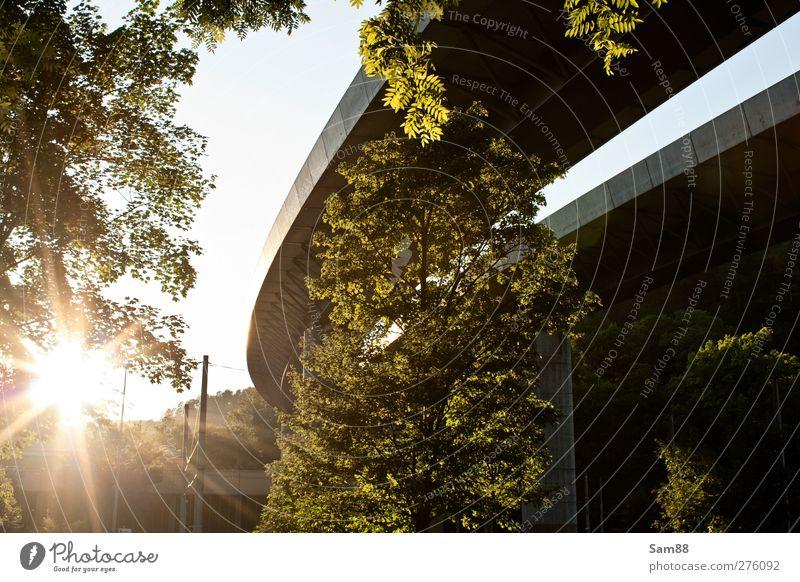 Unter der Brücke Natur grün Stadt Sommer Baum Landschaft gelb Umwelt Architektur hell Verkehr Brücke Schönes Wetter heiß Bauwerk Mobilität