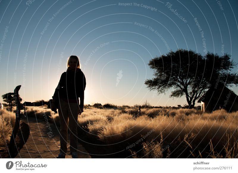 Auf zum Sundowner! Mensch feminin Junge Frau Jugendliche Erwachsene 1 18-30 Jahre Natur Landschaft Sonnenaufgang Sonnenuntergang Baum Gras Wüste stehen schön