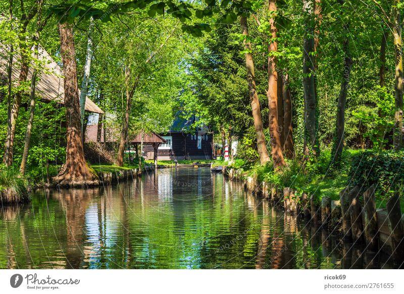 Gebäude im Spreewald in Lehde Ferien & Urlaub & Reisen Natur alt grün Wasser Landschaft Baum Haus Erholung Wald Architektur Umwelt Frühling Tourismus Europa