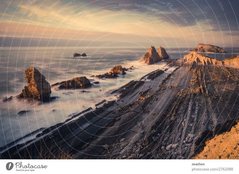 Sommerabend Himmel Natur blau weiß Landschaft Meer Wolken Strand Küste Gras orange braun grau Felsen rosa